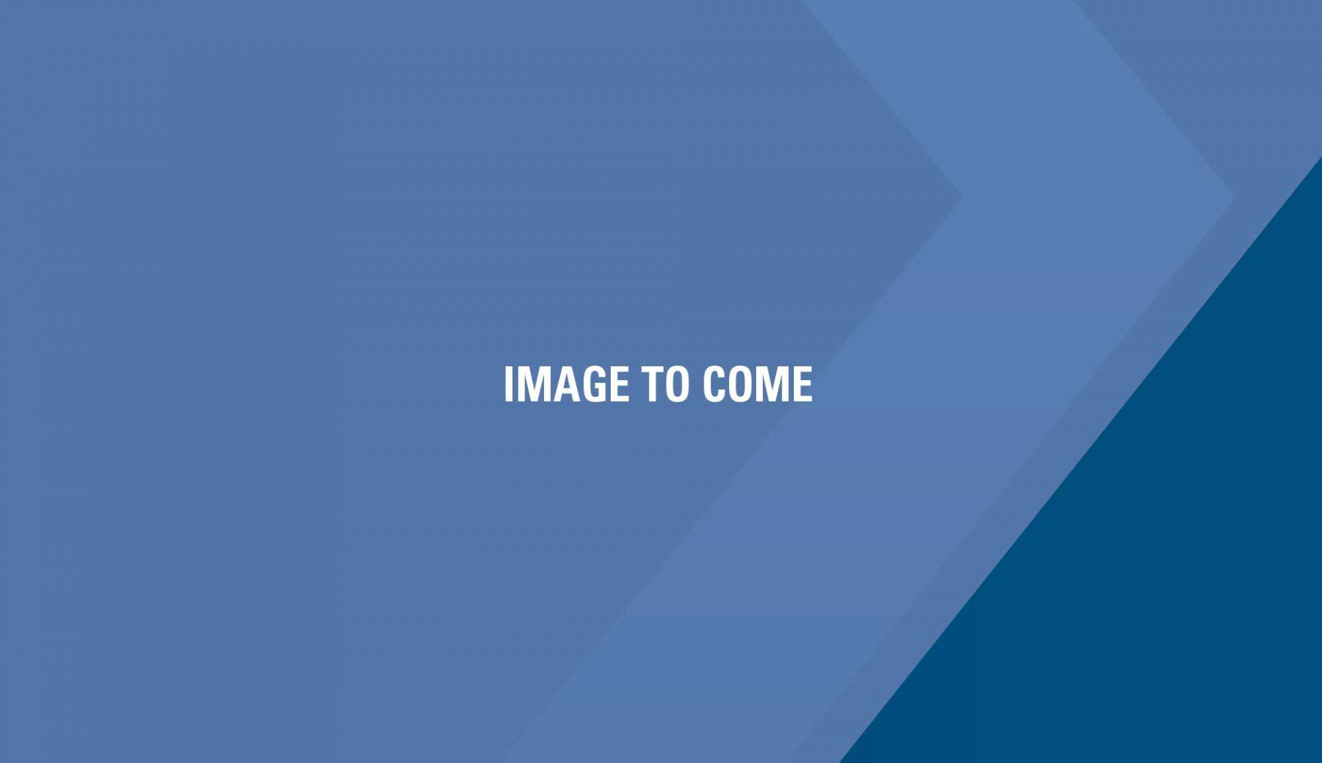 Rexroth A11V250/ Rexroth A10V45